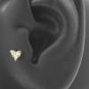 Zirconia Heart Attachment