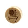 Crocodile Cactus Plugs - Cactus In Pot