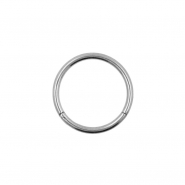 Titanium Click Ring