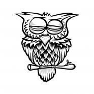 Sticker - Owl